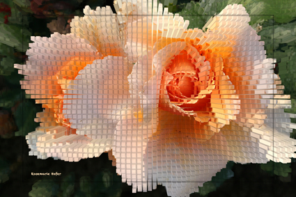 Cube-Flower-III-by-Rosemarie-Hofer-Blog