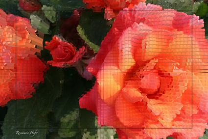 Cube-Flower-II-by-Rosemarie-Hofer