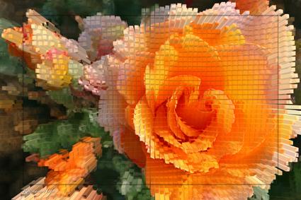 Cube-Flower-VII-by-Rosemarie-Hofer