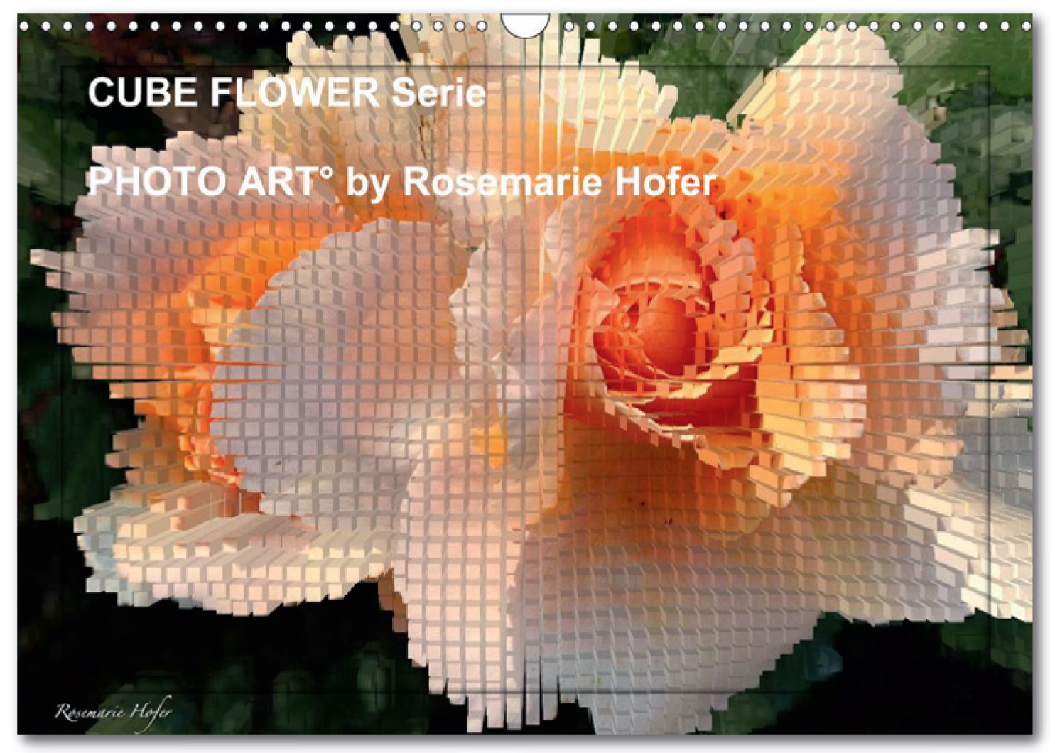 Posterbook-CUBE-FLOWER PHOTO-ART°-by-Rosemarie-Hofer