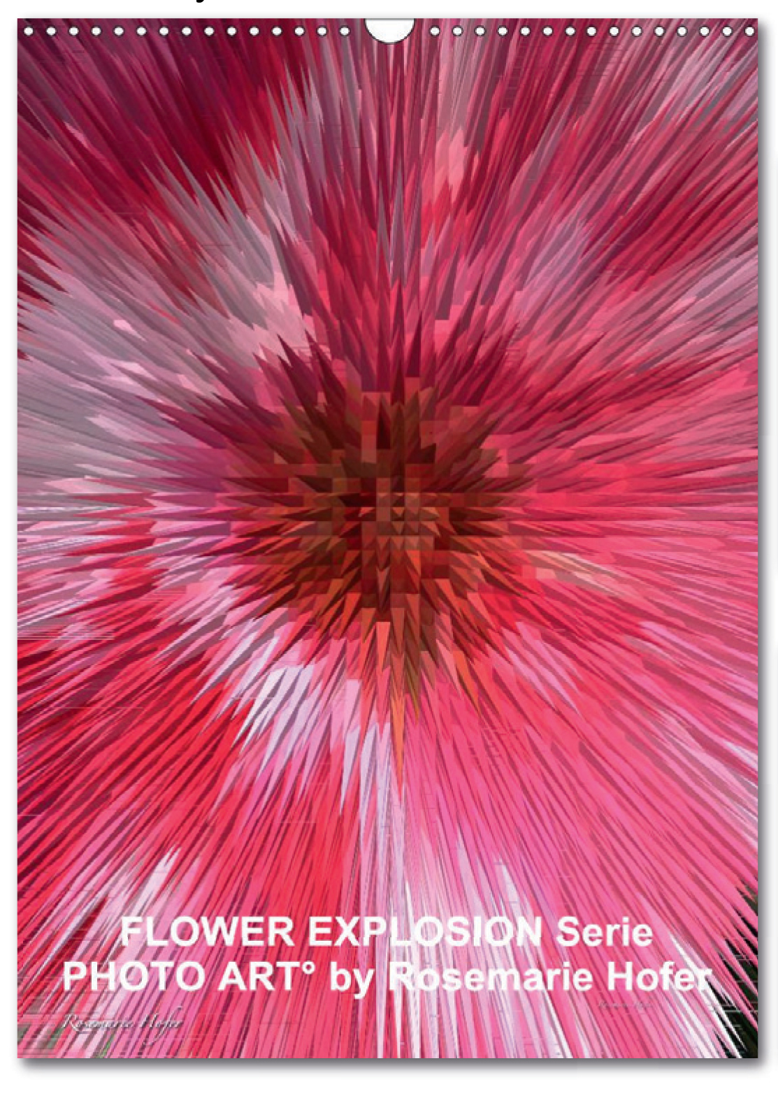 Posterbook-'Flower-Explosion-PHOTO-ART°-by-Rosemarie-Hofer'-Titelbild