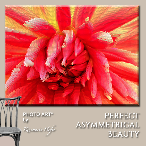 Perfect-Asymmetrical-Beauty-PHOTO-ART°-by-Rosemarie-Hofer-Internetposting