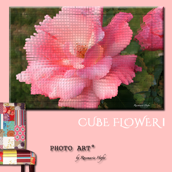 CUBE-Flower-I-PHOTO-ART°-by-Rosemarie-Hofer-Internetposting