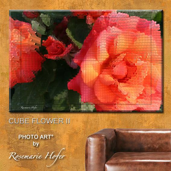 CUBE-FLOWER-II-PHOTO-ART°-by-Rosemarie-Hofer-WP