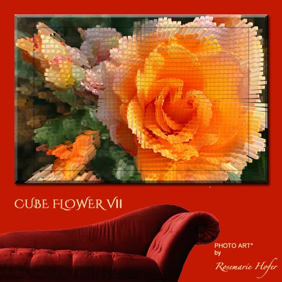 Cube-Flower-VII-PHOTO-ART°-by-Rosemarie-Hofer-Internetposting