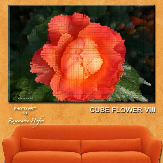 CUBE-FLOWER-VIII-PHOTO-ART°-by-Rosemarie-Hofer-WP