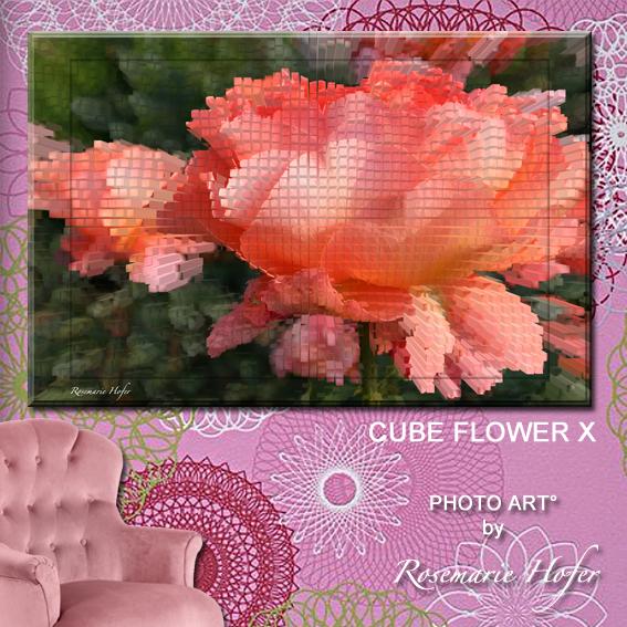 CUBE-FLOWER-X-PHOTO-ART°-by-Rosemarie-Hofer-WP