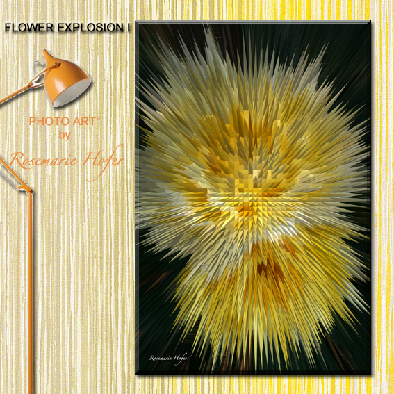 FLOWER EXPLOSION-I-PHOTO-ART°-by-Rosemarie-Hofer-WP