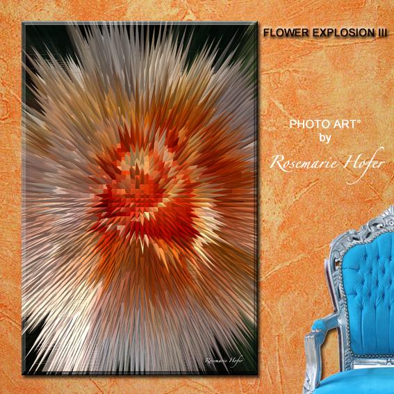 FLOWER EXPLOSION-III-PHOTO-ART°-by-Rosemarie-Hofer-WP