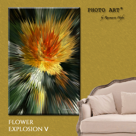Flower-Explosion-V-PHOTO-ART°-by-Rosemarie-Hofer-Internetposting