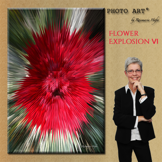 Flower-Explosion-VI-PHOTO-ART°-by-Rosemarie-Hofer-Internetposting