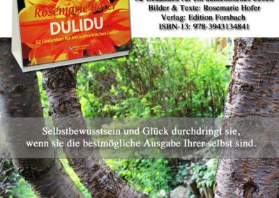 Aufsteller-DULIDU-Bild-33-©-by-Rosemarie-Hofer